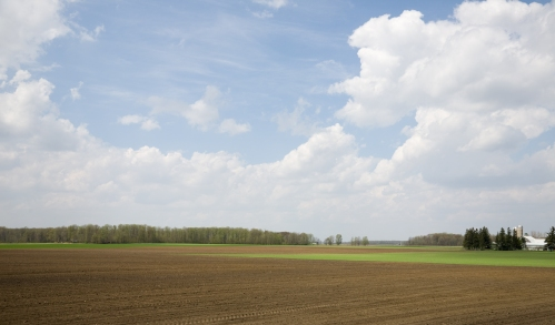 Farmland Near Conestogo