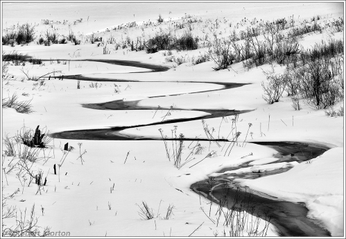 Winter-Meanders