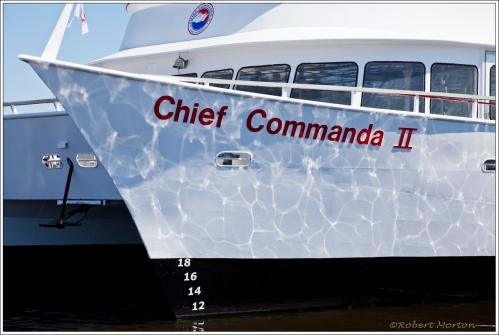 Chief Commanda 2