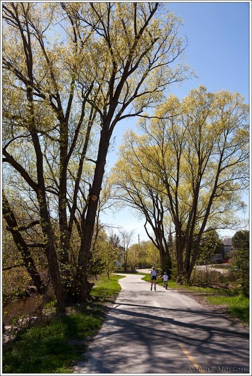 Spring Bike Path