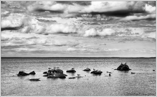 Rocks Clouds Seagulls
