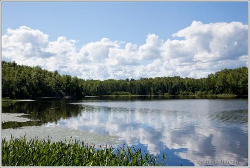Cloud Over Mink Lake