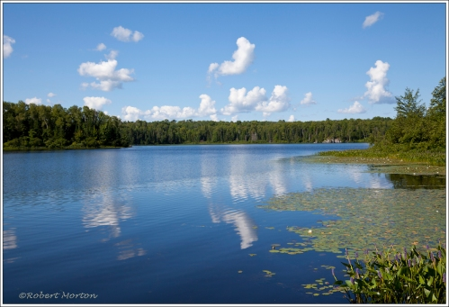 Mink Lake Cloud