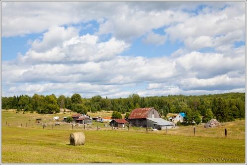 Northern Ont Farm