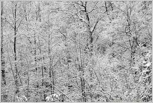 Snow Maze