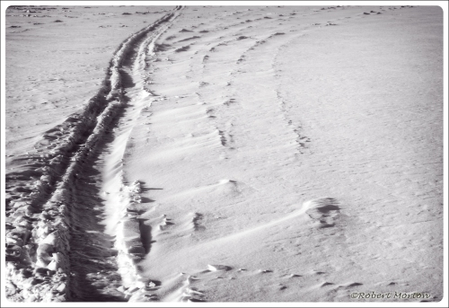 Snow Surface Mono