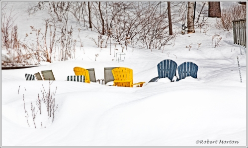 Muskoka Chairs Snow
