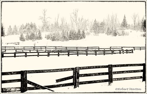 Fences II