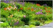 Ella's Garden