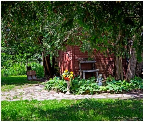 Summer Yard