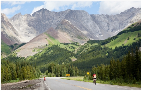 Kananaskis Cyclist