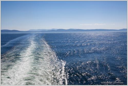 Salish Sea II