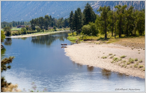 Summer on the Similkameen River
