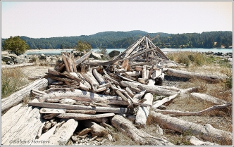 Log Pile Lineart