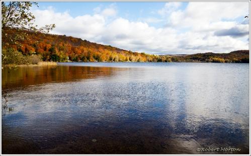 Four Mile Autumn