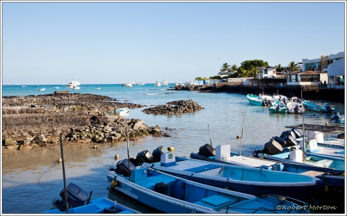 Puerto Ayora Harbour