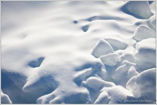 Surface Snow