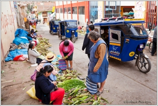 Corn Sales