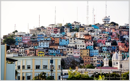 Guayaquil Neighborhood