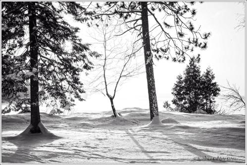 Portage Cold