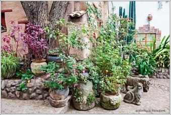 Seminario Courtyard 3