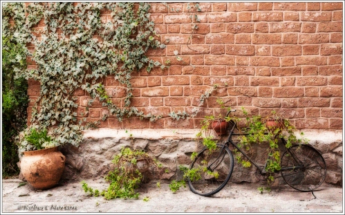 Bicycle Planter IIA2 Warm