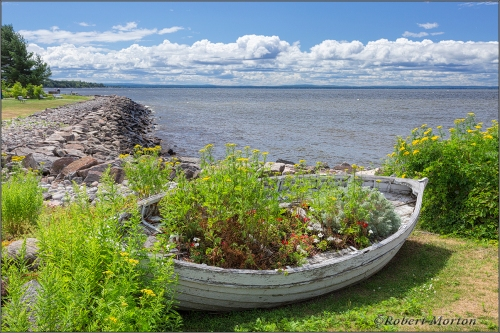 Waterfront Planter