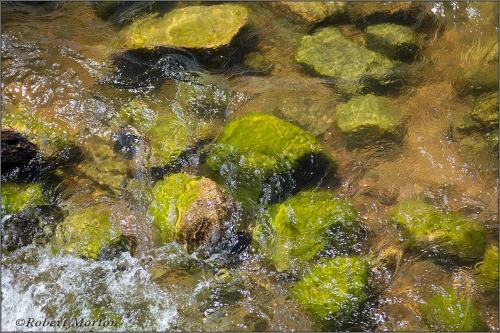 Stones Water Sun