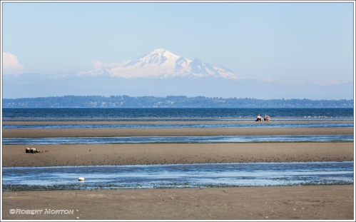 Ignoring Mount Baker