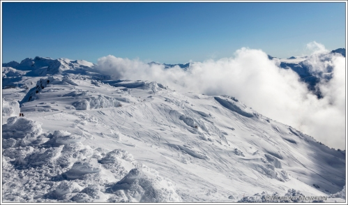 Whistler Snowfield