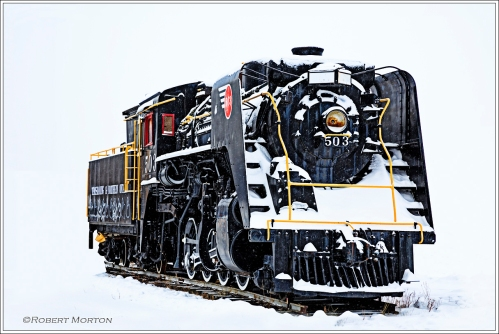 Locomotive 503 Galer