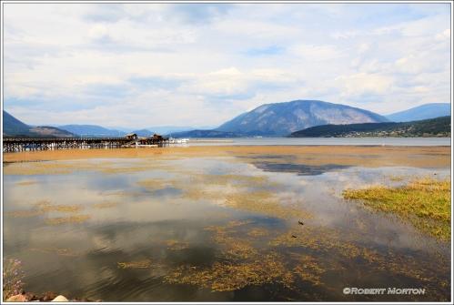 Salmon Arm Harbour