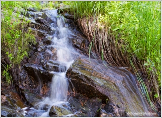 Water Stream Duchesnay