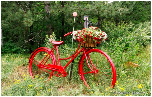 Red Bike II