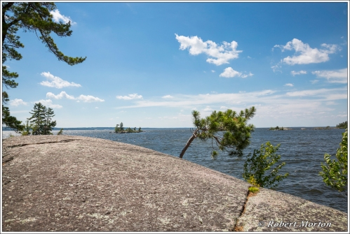 Rock Pines Water