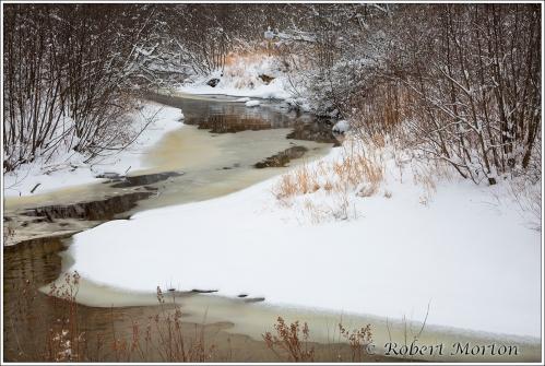 winter-comes