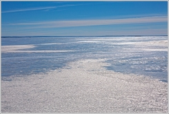 Ice Abstract Nipissing Col Gr SB