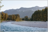 Elk River Fernie