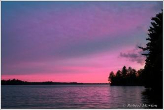 Trout Lake Purple