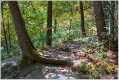 Duchesnay Path