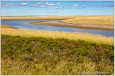 Koujebougiac Marsh 2