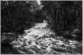 Upper Rapids Duchesnay Creek, Monochrome